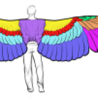 Winged Wednesdays: How Big are an Angel's Wings?