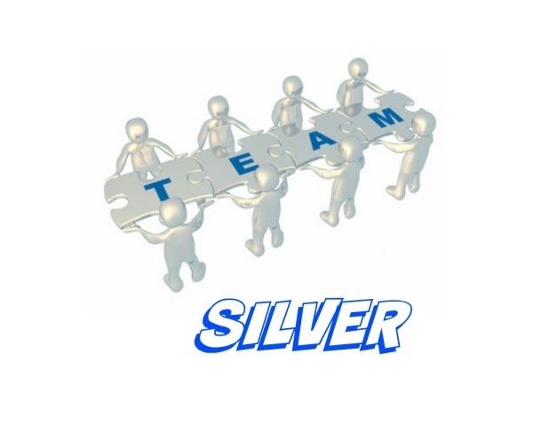 Team Silver